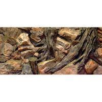 Pozadí AQUA EXCELLENT Root 120 x 50 cm