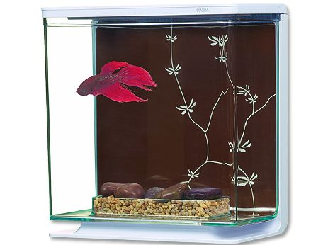 Hagen Marina Betta Kit Contemporary akvárium plastové 3 l