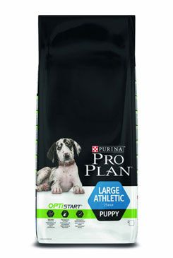ProPlan Dog Puppy Large Athletic