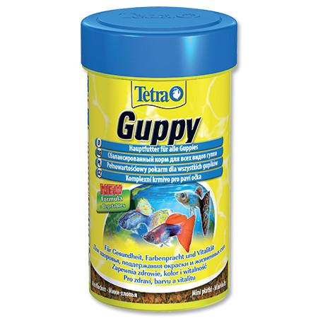Tetra Guppy food základní krmivo pro ryby