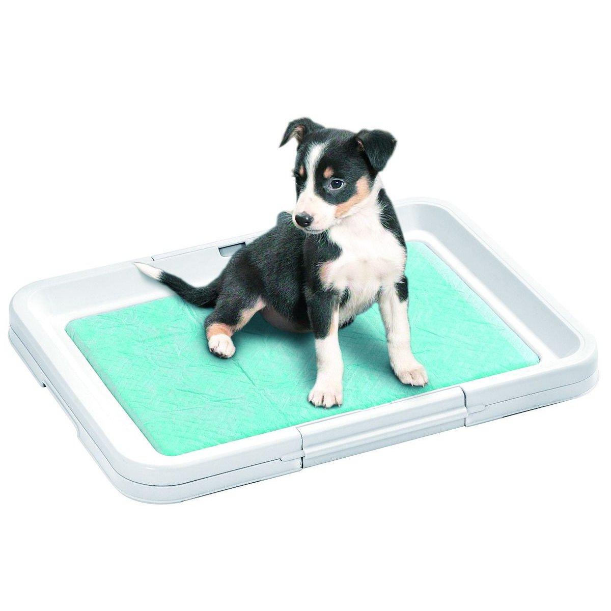 Karlie Toaleta plochá pro štěně, 49,5x39,5x4 cm