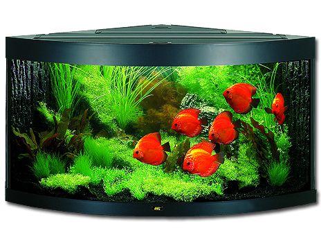 Juwel Trigon 350 akvárium set rohový černý 123x87x65 cm, objem 350 l