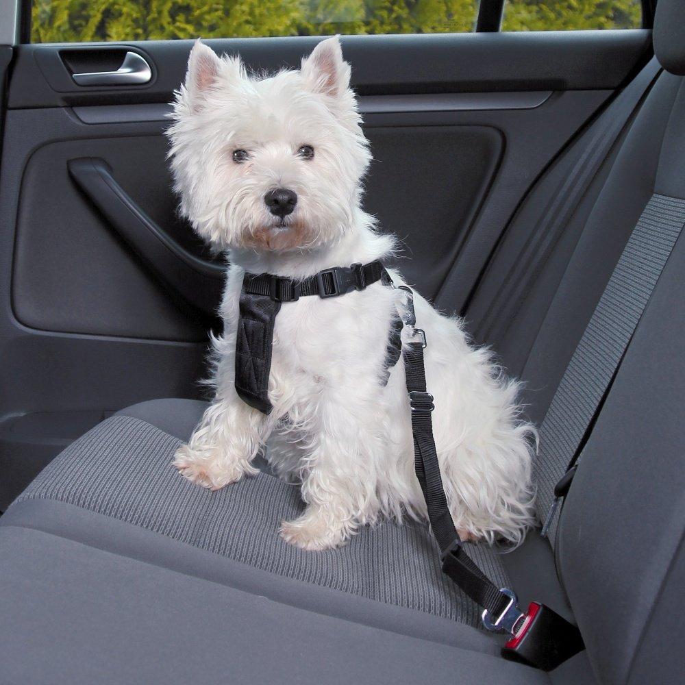 Trixie Postroj do auta pro psy černý
