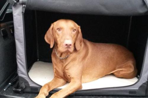 Přepravka pro psy Maelson - černo-šedá