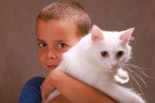Z raubíře poslušnou kočičkou