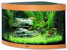 Juwel Trigon 190 akvárium set rohový buk 98x60x50 cm, objem 190 l