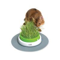 Trávník CAT IT Design Senses 2.0