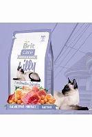 Brit Care Cat Lilly I`ve Sensitive Digestion 7 kg