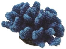 Dekorace AQUA EXCELLENT Mořský korál modrý 14,5 x 10,5 x 7,4 cm