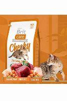 Brit Care Cat Cheeky I`m Living Outdoor - zvěřina & rýže pro kočky žijící venku 400 g