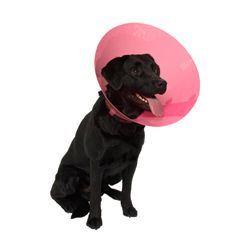Kruuse Buster Fashion Collar Plastový ochranný límec pro psy růžový