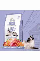 Brit Care Cat Lilly I`ve Sensitive Digestion - jehněčí & losos pro kočky s citlivým zažíváním 2 kg