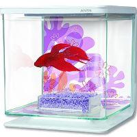 Hagen Marina Betta Kit Flower akvárium plastové 2 l
