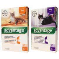 Advantage pipety pro kočky a králíky