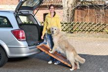 Karlie-Flamingo DOG ramp - skládací, rozměr 120x30x6cm