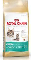 Royal Canin Breed Feline Kitten Maine Coon - pro koťata mainské mývalí kočky 400 g