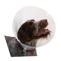 Kruuse Buster Classic Collar Plastový ochranný límec pro psy, 30 cm