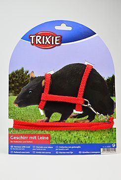 Trixie Nylonový Postroj pro fretky a krysy, 125x0,8 cm
