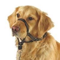 Halti Nylonová ohlávka pro psy - velikost 4, krk 45-55 cm