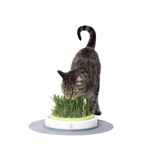 Hagen Cat It Design Senses trávník