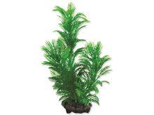 Rostlina TETRA Green Cabomba S
