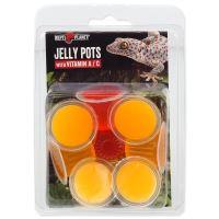 Krmivo REPTI PLANET Jelly Pots Fruit 8ks