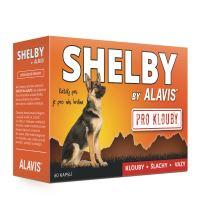 ALAVIS Shelby PRO KLOUBY 60 kapslí