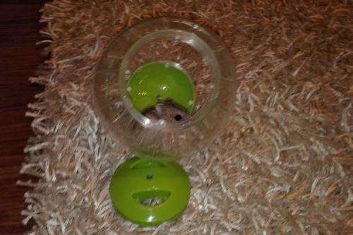 Koule pro hlodavce Argi - zelená - 12,5 cm